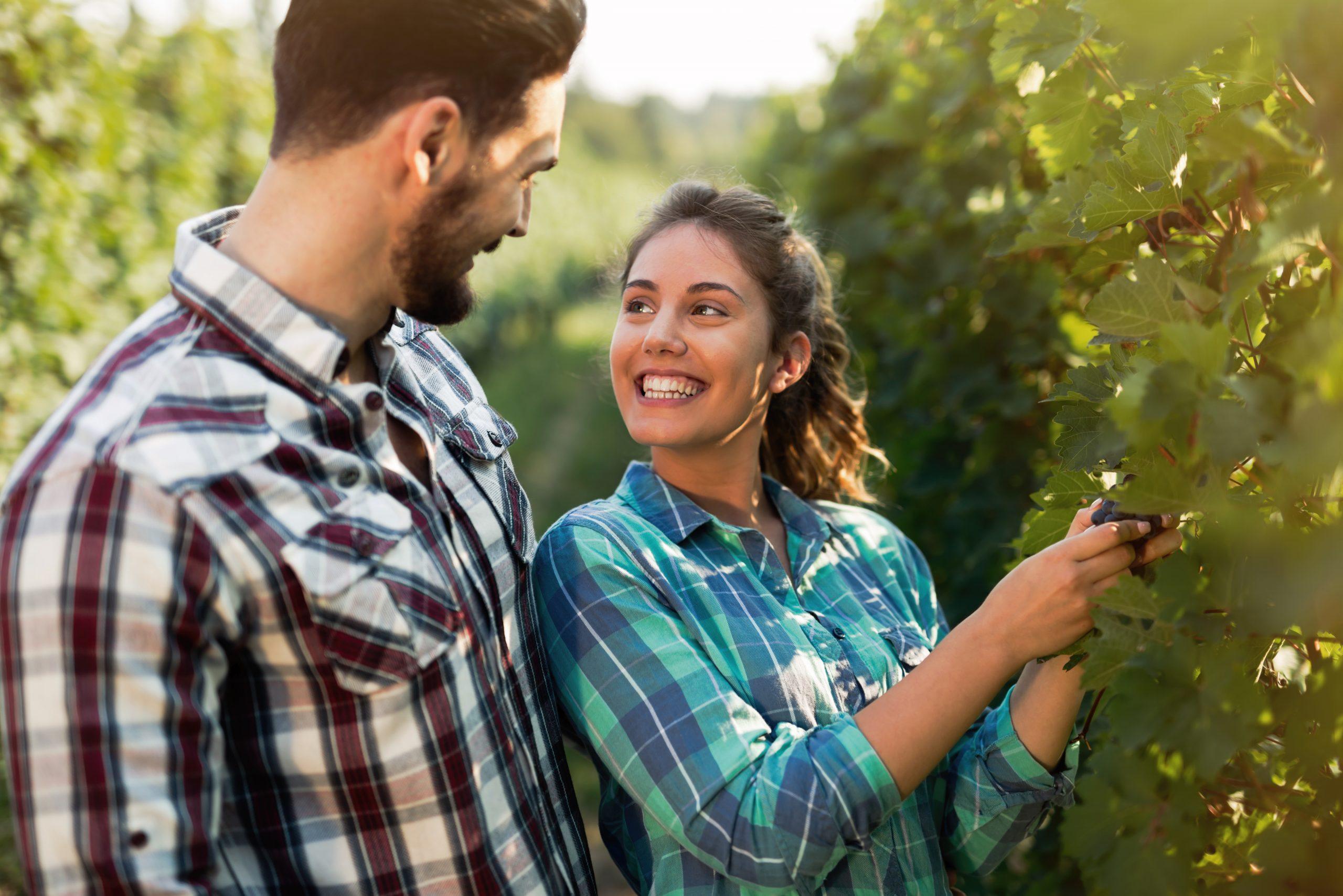Operi nel settore vinicolo? Ottimizza subito le vendite
